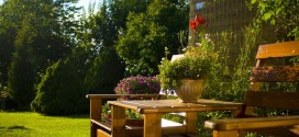 Best Ways to Organise Your Backyard